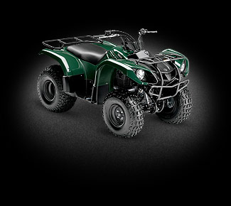 квадроцикл Yamaha Grizzly 125